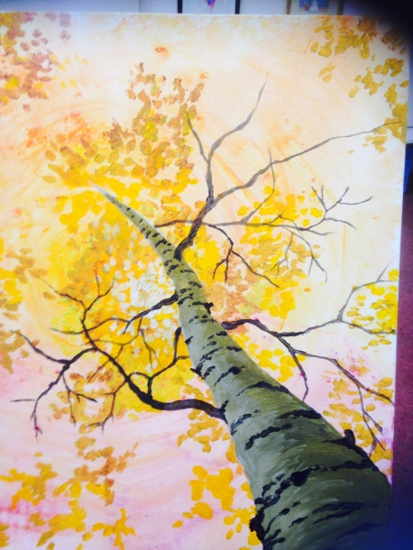 Birch - (sold) - ©JBowers